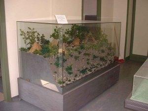Centro naturalistico Archeologico dell'Appennino Pistoiese