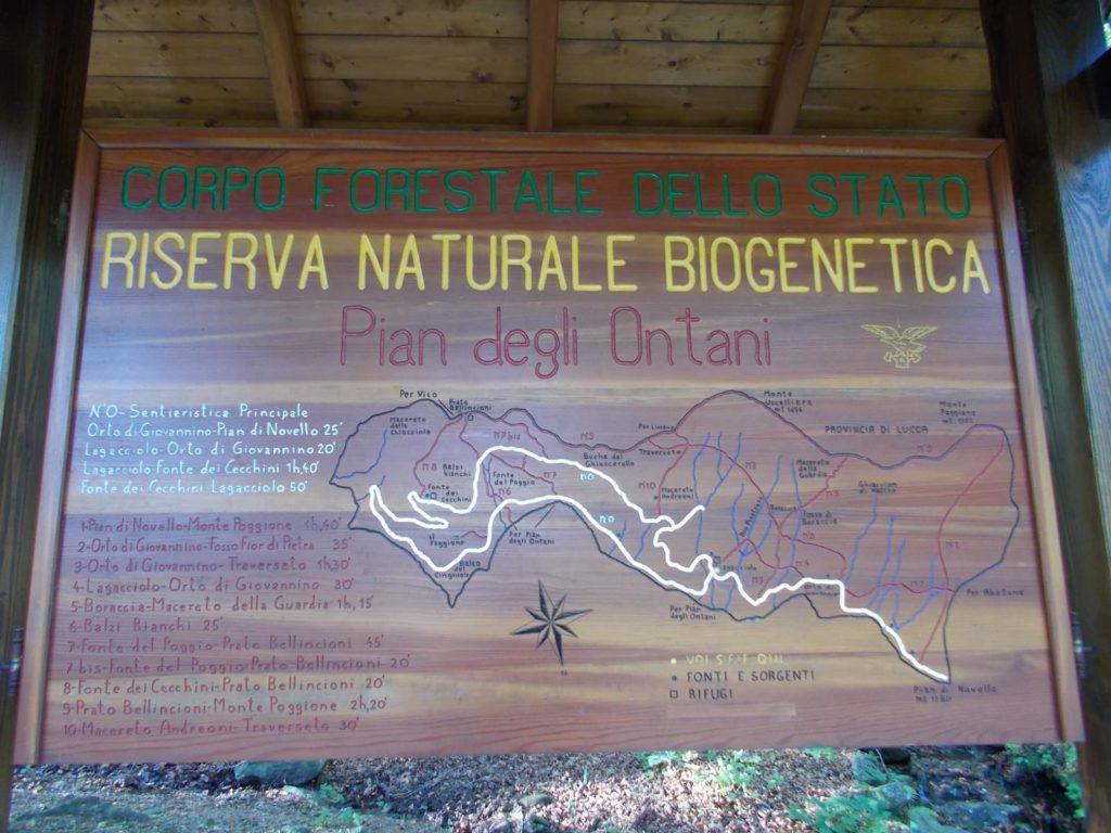 Riserva Naturale Biogenetica di Pian degli Ontani